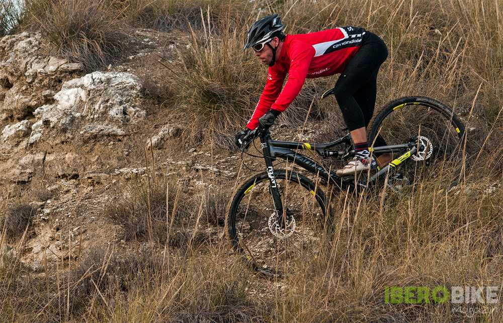 cannondale_scalpel_29_4
