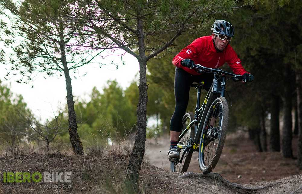cannondale_scalpel_29_6
