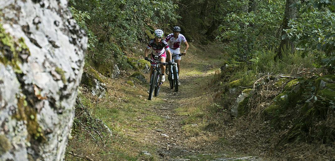 promo pedales sariten (25)