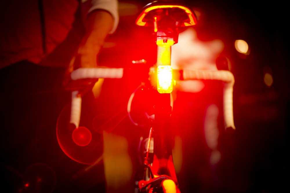 Lupine rotlicht 1