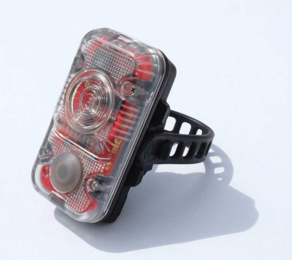 Lupine rotlicht grau 01