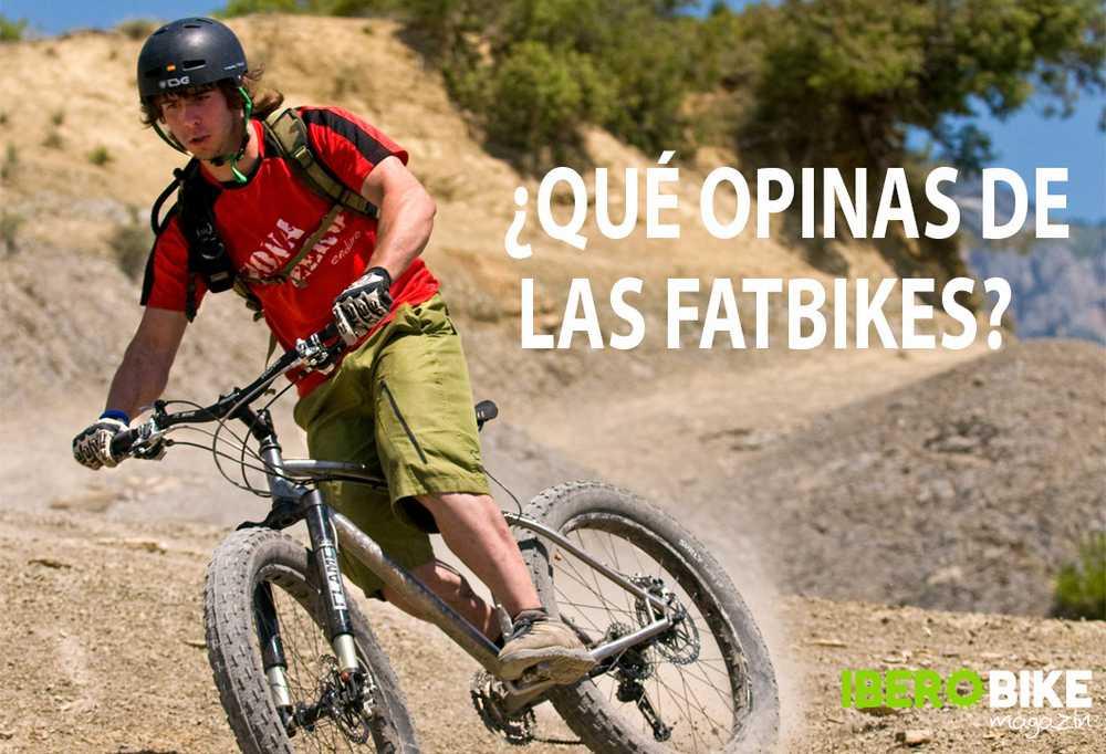 encuesta_fatbikes_2015