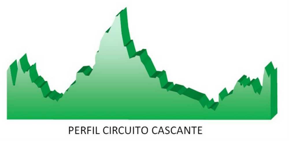 Perfil circuito CCR Cascante