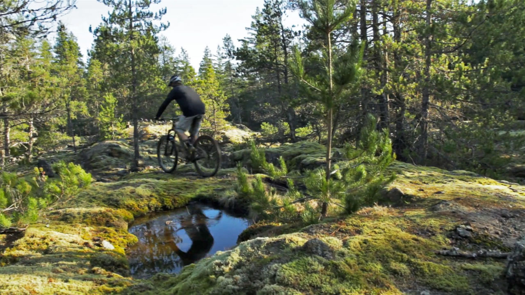quadra_island_naked_bicycles