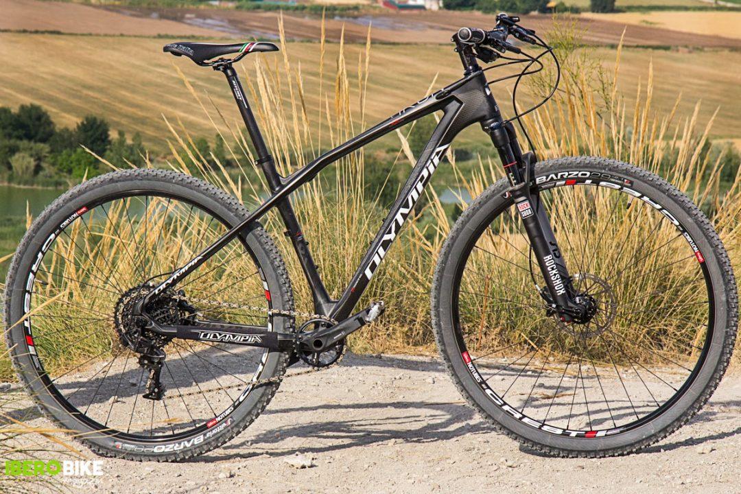 bicicleta_olympia_iron_twentyniner-10