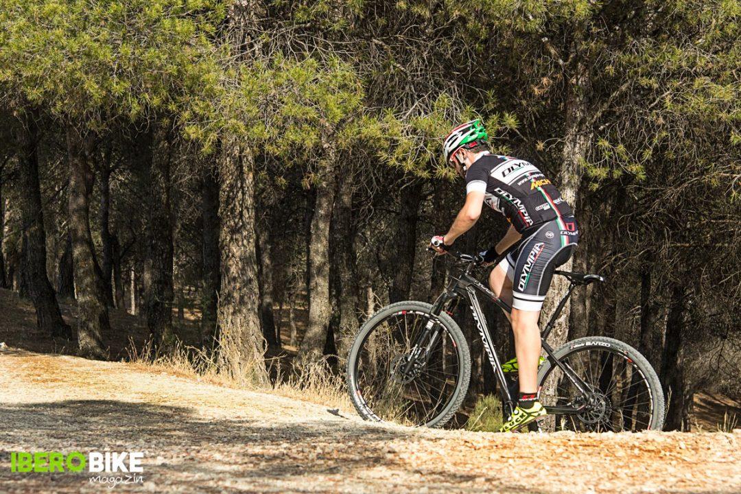 bicicleta_olympia_iron_twentyniner-7