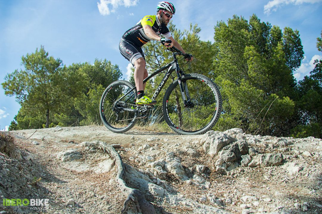 bicicleta_olympia_iron_twentyniner4