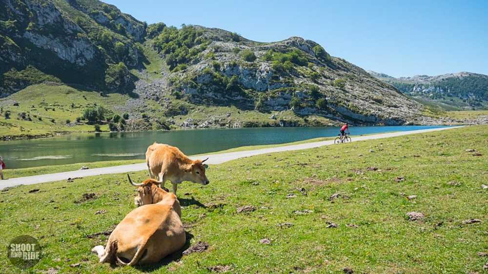 Puertos_Astur-Cantabros-Lagos_de_Covadonga_15