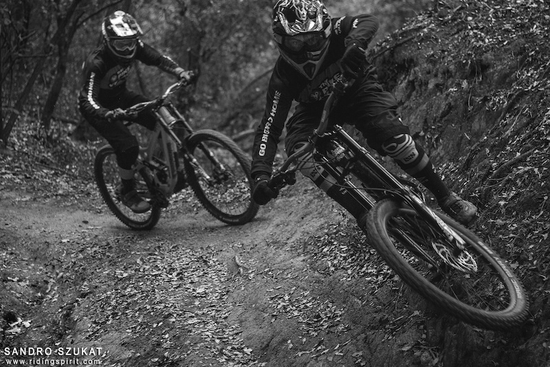 Through Mediterranean Woods _feral riders_sandro sukat