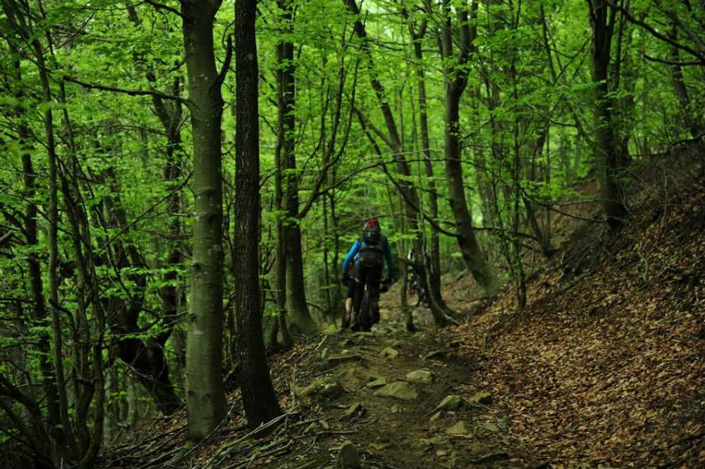 Bosques III edición del Maratón UrolaGaraia BTT