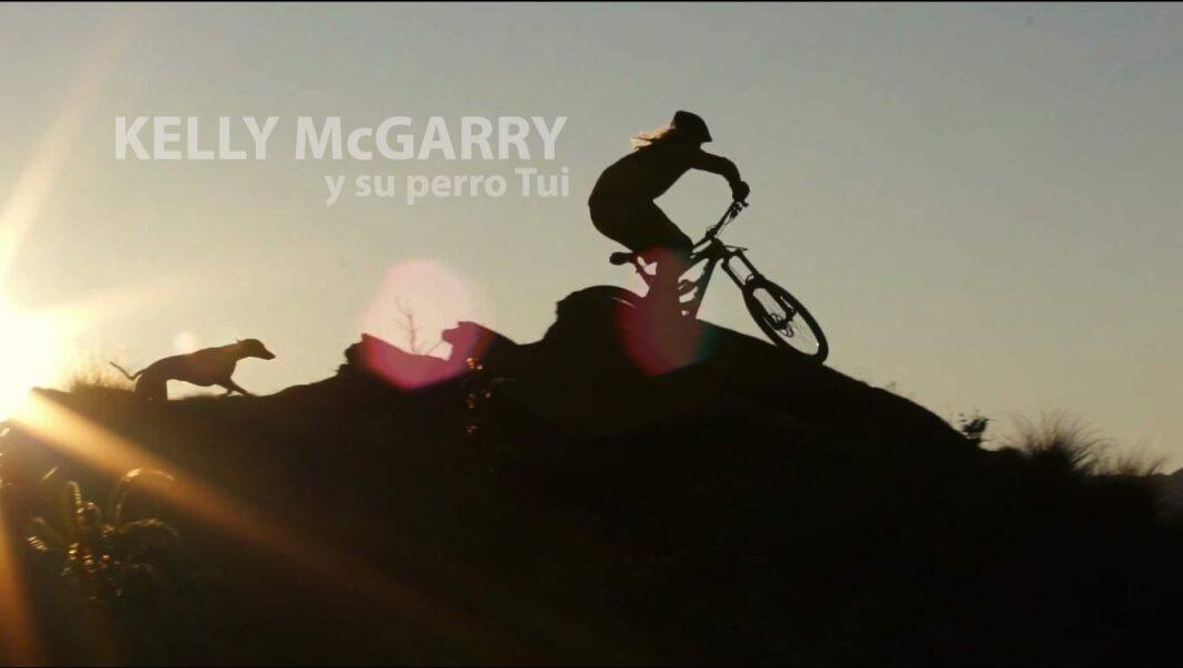 kelly_mcgarry_perro_dog_tui