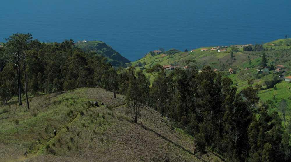 Madeira-Island-Discovery---Video