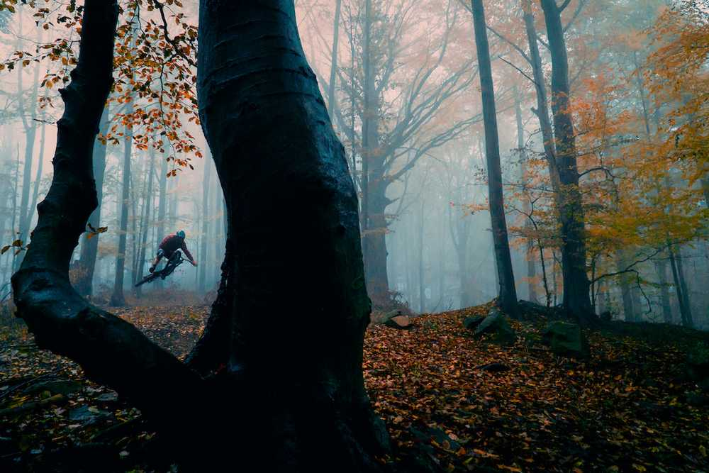 ewiaproduction-wild-trails-video
