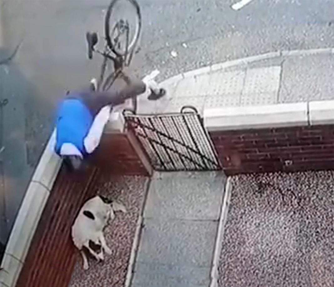 video-viral-caida-bicicleta-perro-casa-accidente-ciclista
