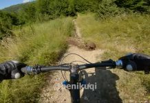 dos-ciclistas-de-montaña-escapan-de-las-garras-de-una-familia-de-osos-en-una-sola-bicicleta-video
