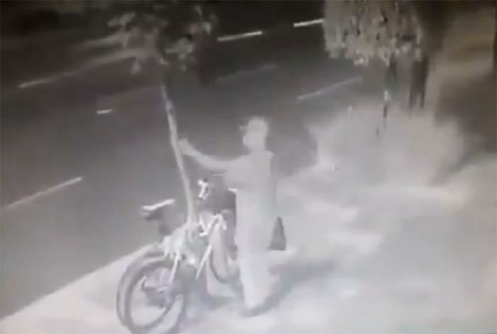 Vídeo: Corta un árbol para robar dos bicicletas candadas a él en la calle