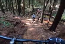 Vídeo: ¡Tensión máxima! Un oso persigue a unos ciclistas de montaña durante un kilómetro