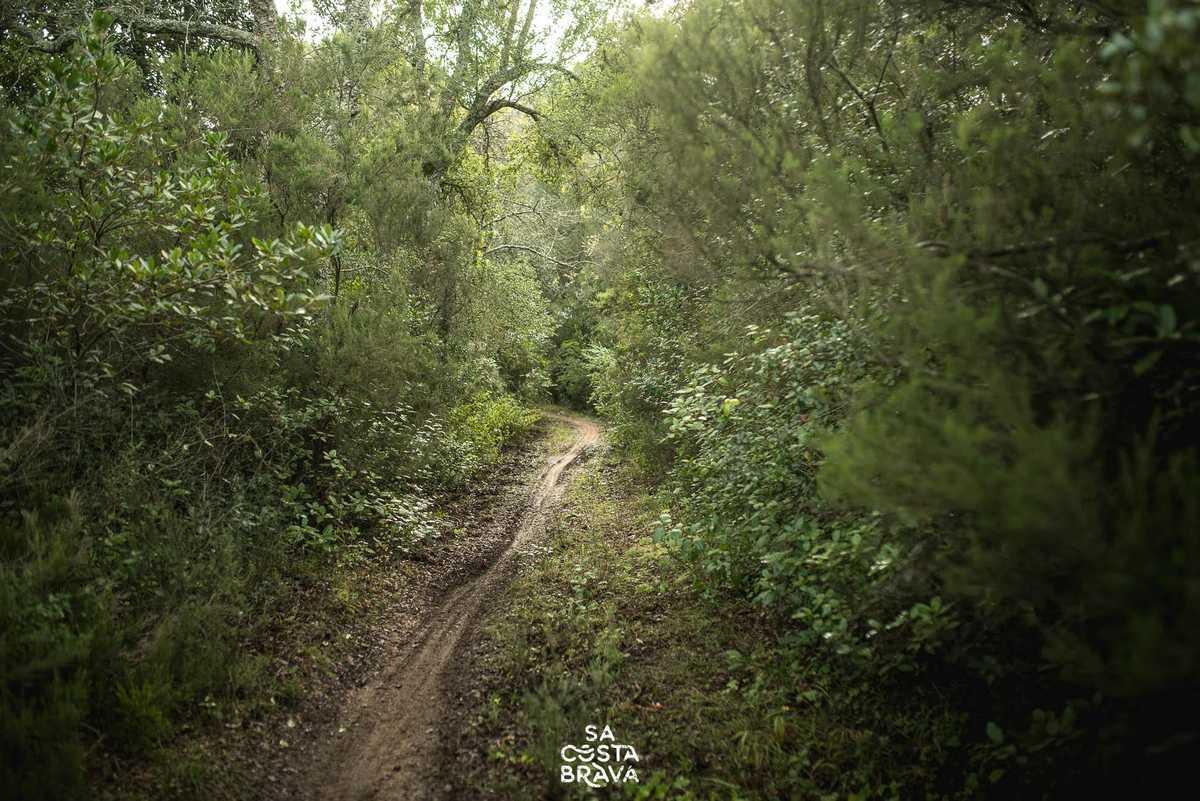 Iberobike-Nectus-Así-vivimos-la-Sa-Costa-Brava-2019-una-carrera-de-supervivencia_5.jpg noviembre 5
