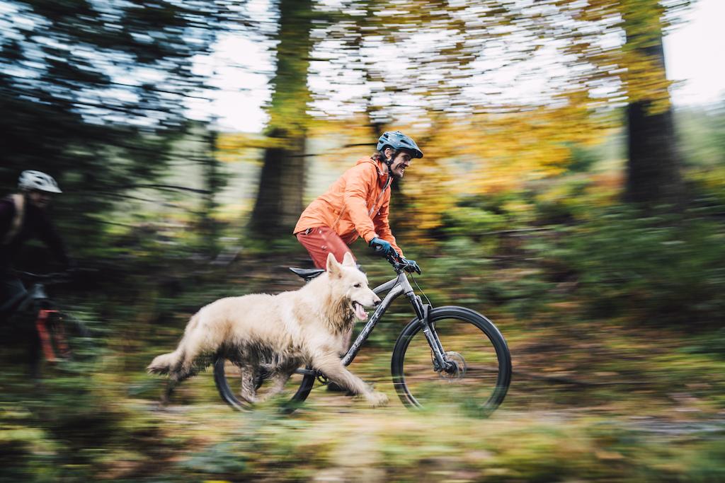 kai-el-perro-endurero-de-la-marca-de-bicicletas-de-montaña-vitus-Mythique