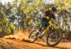 ¿Qué cubiertas de bicicleta duran más?