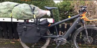 Quieres una gran cargo bike? Con una escalera puedes hacerte una y llevar un árbol