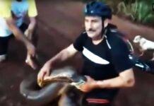 ciclista lucha contra una anaconda para rescatar a un perro