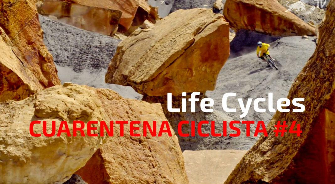 Cuarentena-ciclista-día-4-Life-Cycles-Los-ciclos-de-la-vida-mountain-bike-mtb