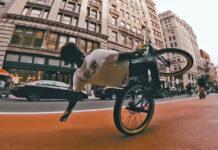 Vídeo: Un grupo descerebrados en bicicleta escapa de la policía de Nueva York durante el confinamiento
