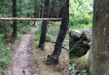 Alambres de espino y árboles cruzados a la altura del pecho. Vídeo de trampas ciclistas que siguen apareciendo