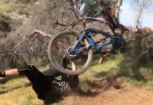 Vídeo-Deja-que-mi-Ibis-haga-el-trabajo let my ibis do the job