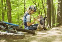 Vídeo: Así es el perro ciclista de Emily Batty