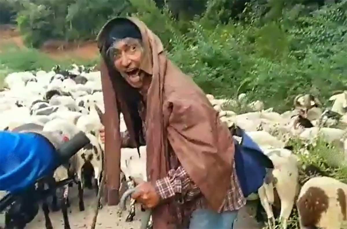 Vídeo: ¡Qué noooo! El espeluznante grito de un pastor a un grupo de ciclistas de montaña