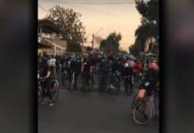 """Fallece atropellado tras acudir a la """"bicifestación"""" con su bicicleta"""