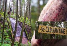 """""""Cuarentena"""", un sendero para bicicletas de montaña muy especial"""