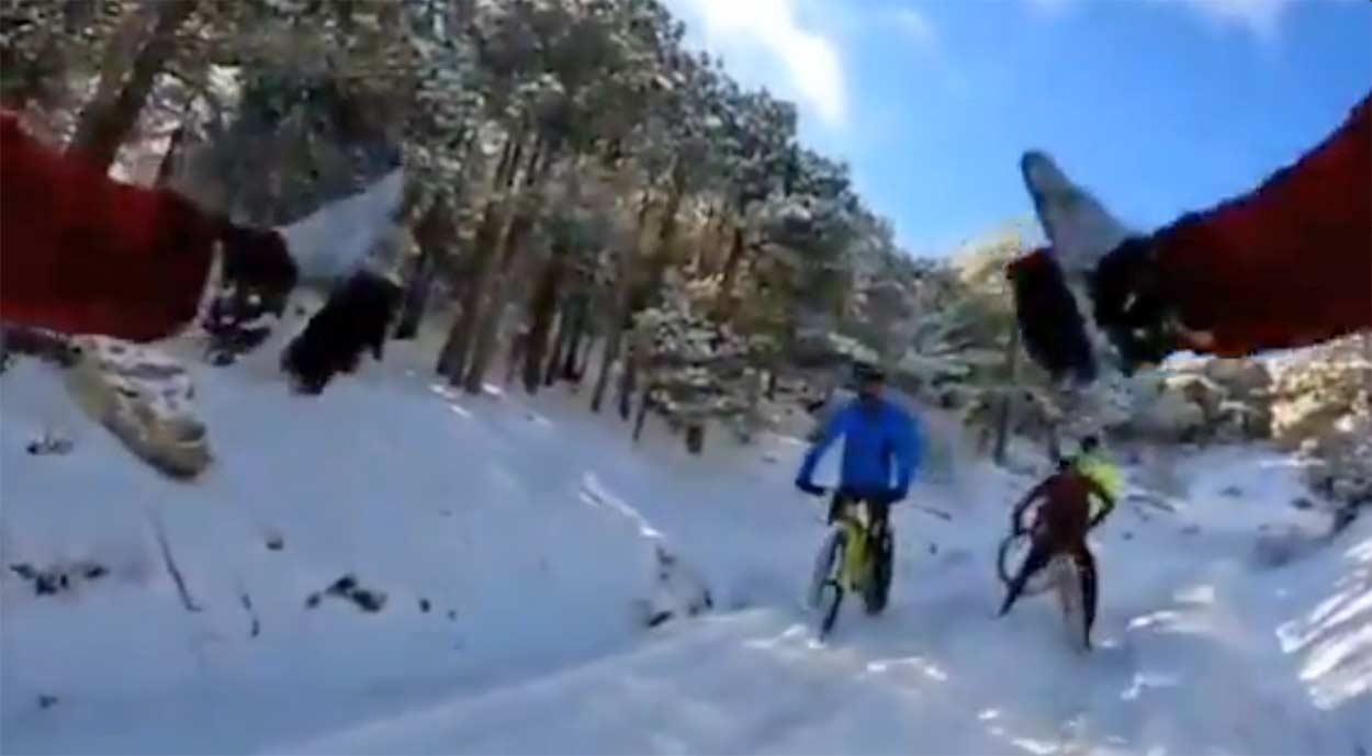 Vídeo: 112 alerta, si vas a montar en bicicleta en la nieve, extrema las precauciones