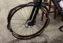 Vídeo: Un perro destroza a mordiscos una bicicleta de carbono