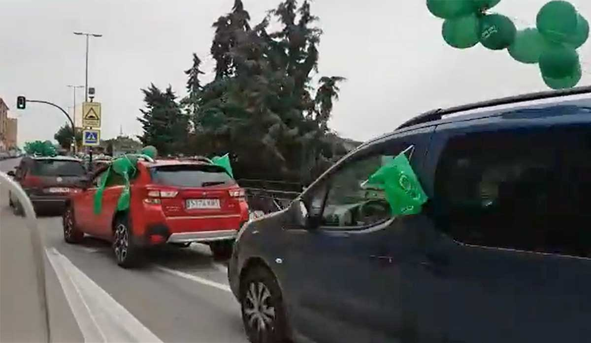 Manifestacion-en-coche-a-favor-de-las-renovables-y-en-contra-de-los-parques-eolicos