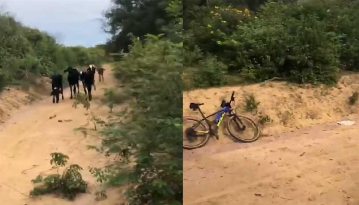 Vídeo: Cuando acorralan a un ciclista en un callejón sin salida...