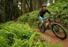 Hasta 19 modelos de bicicletas Marin 2021 podrían causar caídas y lesiones al utilizarse