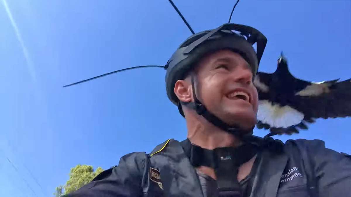 Vídeo: Con este ingenioso truco se protege este ciclista de los ataques de las hurracas